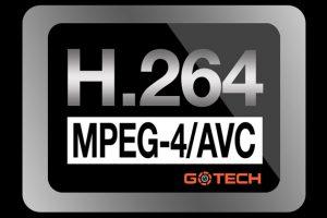 h264-la-gi